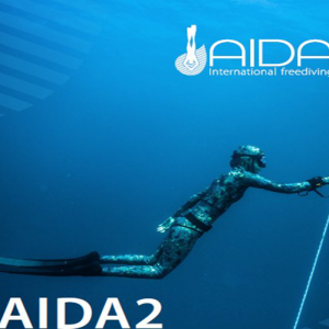 Aida 2 Star Freediver Course