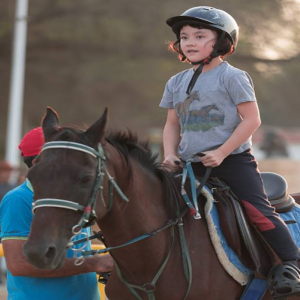cheap horse riding lessons in dubai