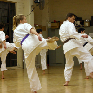 coaching classes for karate