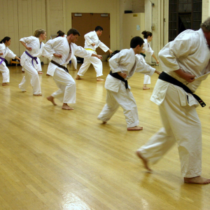 coaching karate