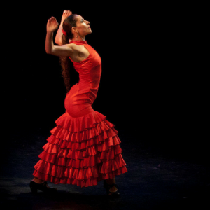 flamenco-dance-beginners