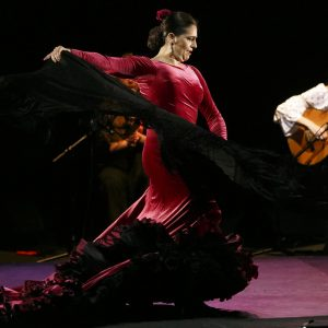 flamenco-private-class