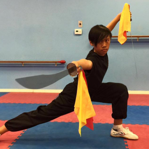 kung fu classes in sharjah