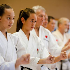 martial arts for adults beginners near me