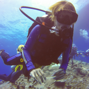 padi open water course dubai