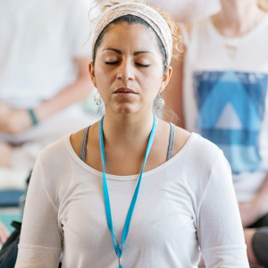 The Meditation Workshop
