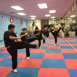Kungfu Classes