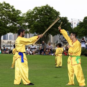kung fu classes in Dubai